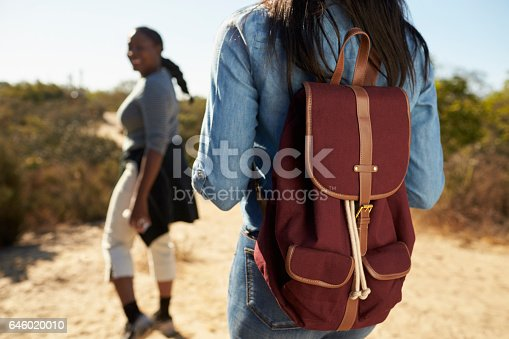 904170246 istock photo Rear View Of Mother And Adult Daughter Hiking In Countryside 646020010