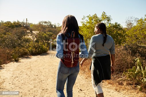 904170246 istock photo Rear View Of Mother And Adult Daughter Hiking In Countryside 646020048