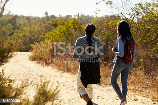 istock Rear View Of Mother And Adult Daughter Hiking In Countryside 646020058