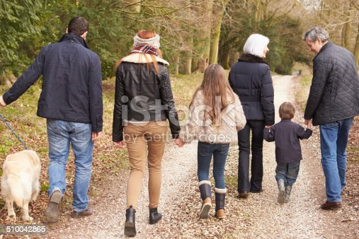 510042945 istock photo Rear View Of Multi Generation Family On Countryside Walk 510042865