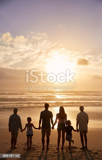istock Rear View Of Multi Generation Family Silhouetted On Beach 939181142
