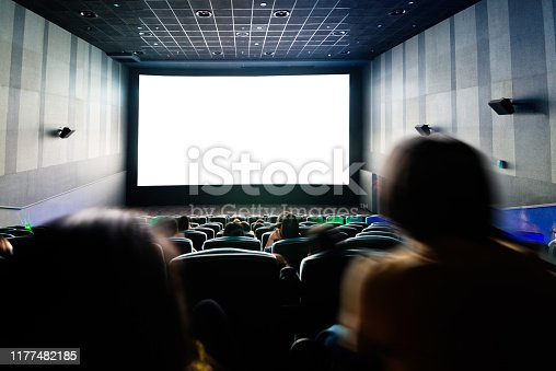 Rear view of people at the cinema.