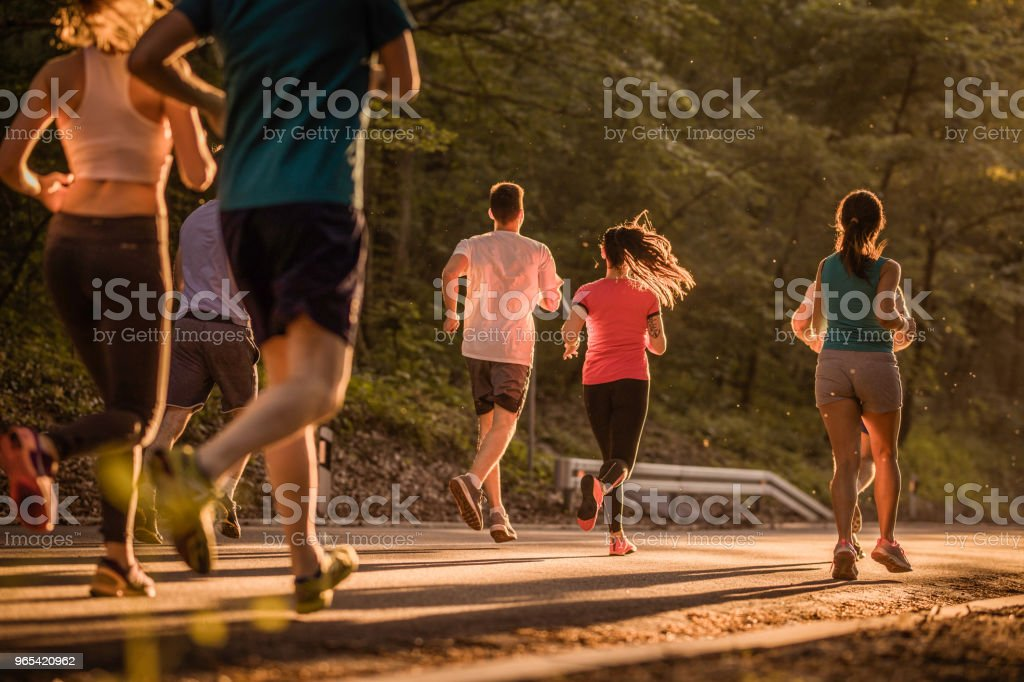 Rear view of runners during marathon race at sunset. royalty-free stock photo