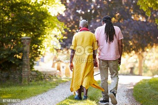 874818944 istock photo Rear View Of Senior Couple Walking Pet Bulldog In Countryside 874818570