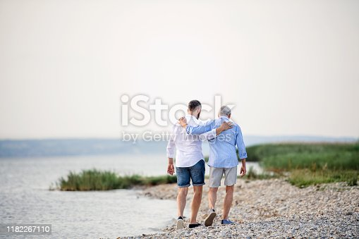 A rear view of senior father and mature son walking by the lake. Copy space.