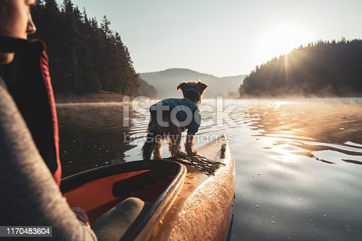 Rear view of Latino woman rowing with kayak at sunrise light, the dog standing on the edge of kayak.