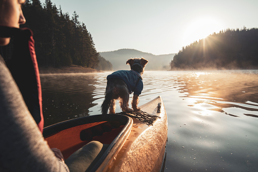 Rear view of woman and her dog on the edge of kayak