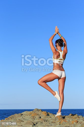 istock Rear view of young woman standing on rock outstretching 527672488