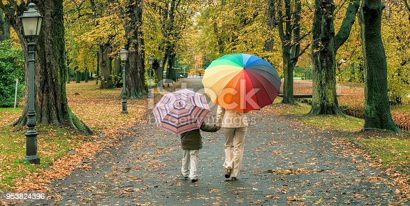 istock Rear view on mother and son with variegated umbrella holding hands walking on footpath in rain through autumn colored park 953824396
