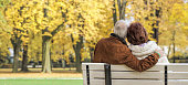 Rear view on senior couple sitting arm in arm on white park bench in autumn