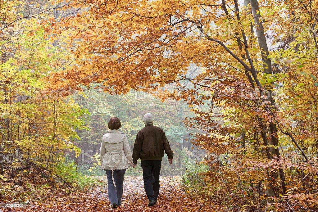 Rückansicht auf altes Paar walking im Herbst-Wald – Foto