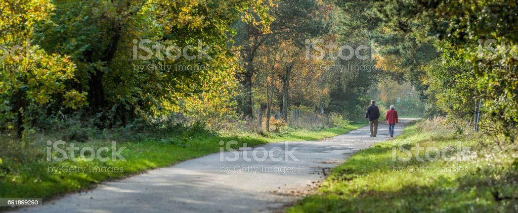 Rear view on senior couple walking in autumn on footpath through forest stock photo
