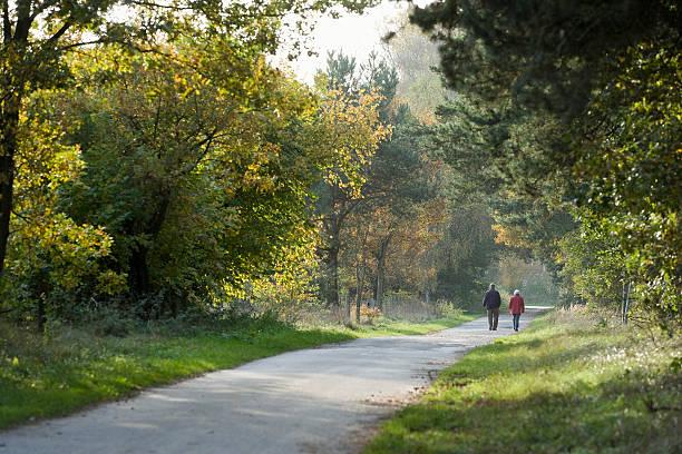 Vista posterior de la pareja senior caminando en el bosque - foto de stock