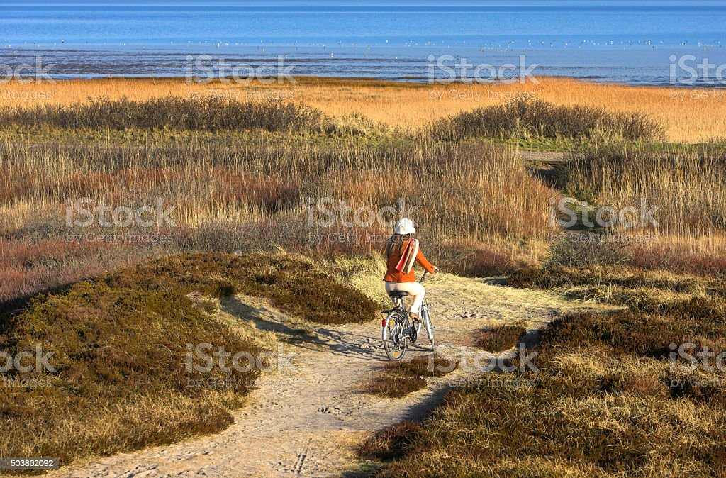 Rear view on woman cycling in dunes seaside stock photo