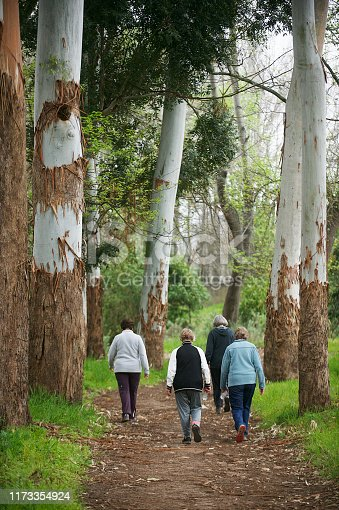 Rearview Active seniors women walking together outdoors on a misty morning in Stellenbosch South Africa