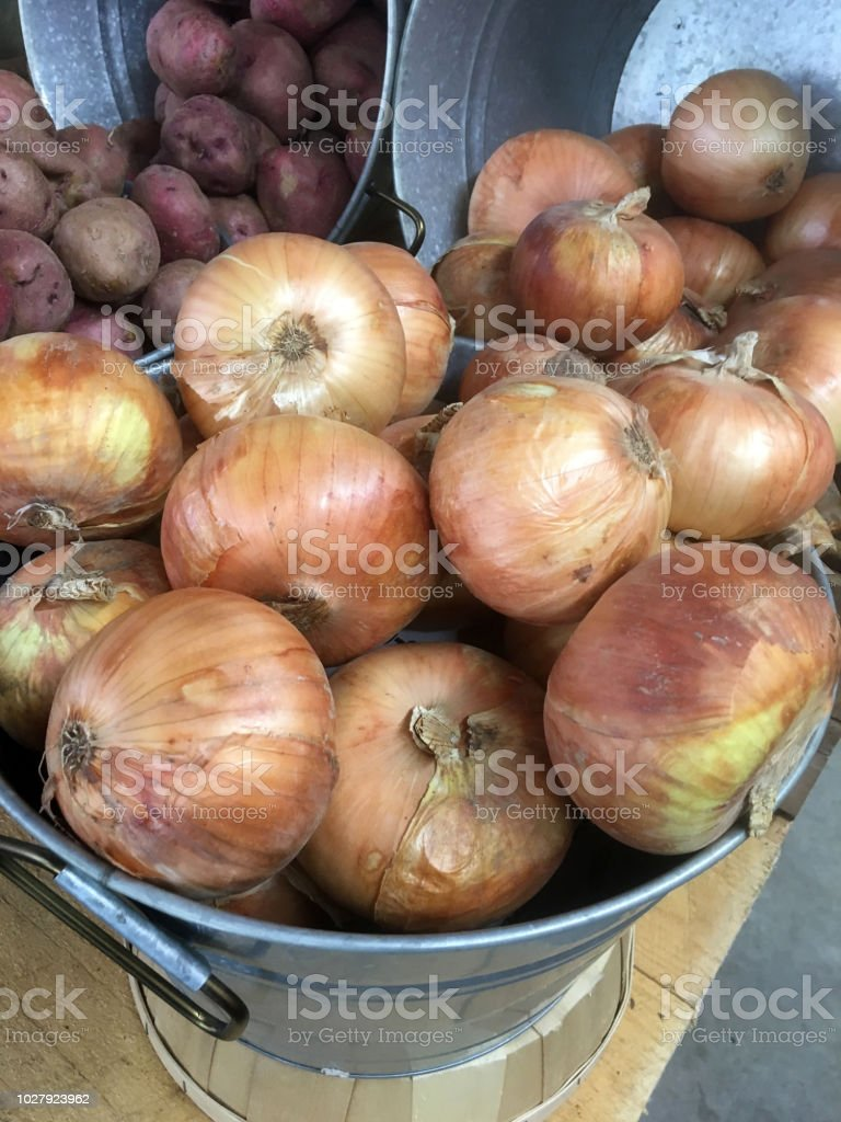 Recently harvested produce (onions and potatoes) stock photo