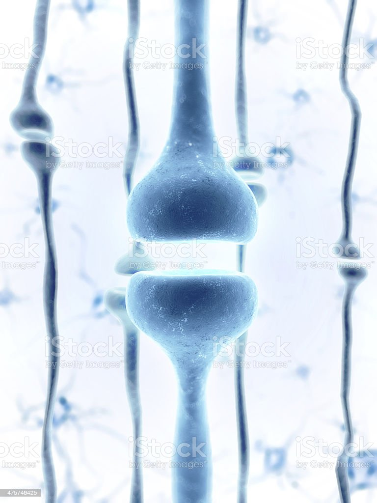 receptor royalty-free stock photo