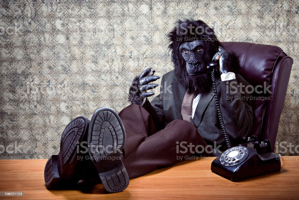 Reclining Business Gorilla on a Phone Call royalty-free stock photo