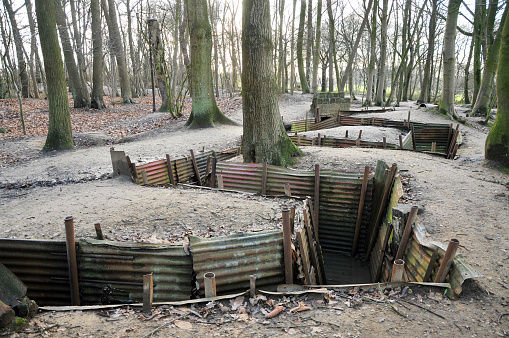 Reconstructed WWI trenches in forest