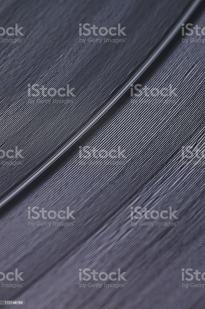 Record Grooves royalty-free stock photo