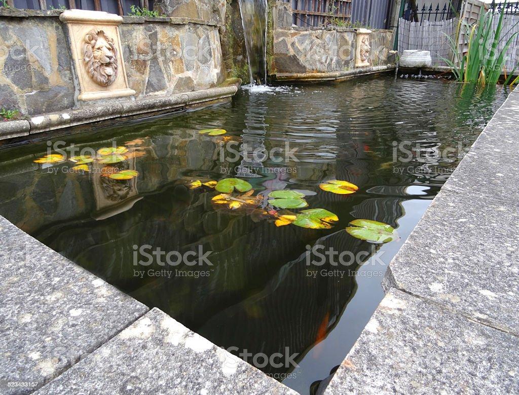Fotografia De Rectangular Planteado Formal Image Estanque Y Cascada - Estanque-rectangular