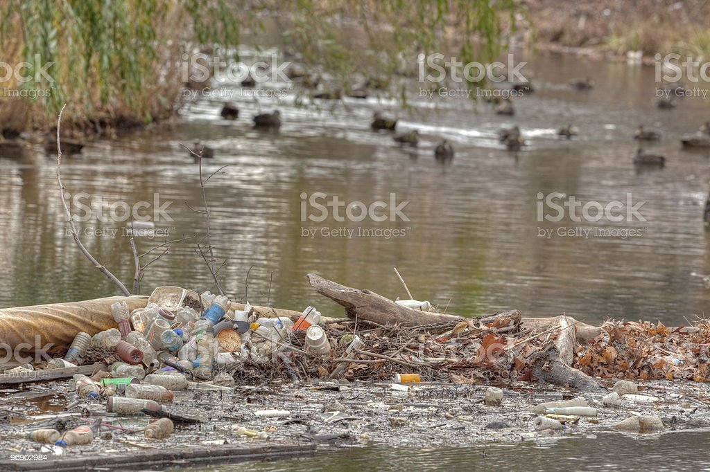 Recyclable garbage left near a duck pond royalty-free stock photo