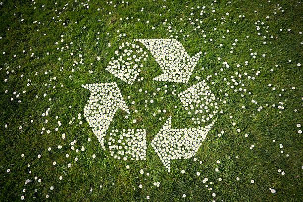 Recycle Logo in Daisies on Grass bildbanksfoto