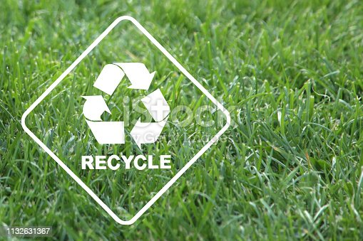 istock recycle save the ecosystem 1132631367