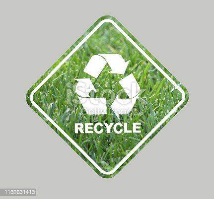 istock recycle save the ecosystem 1132631413