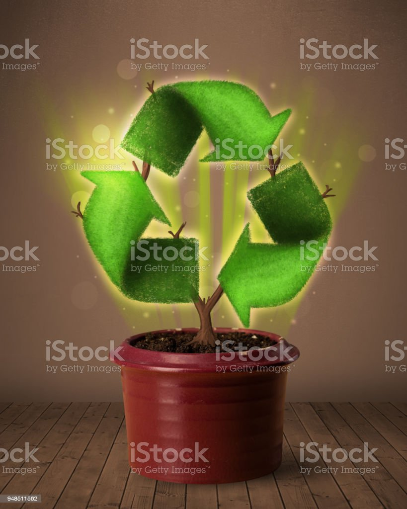 Recycle sign growing out of flowerpot stock photo