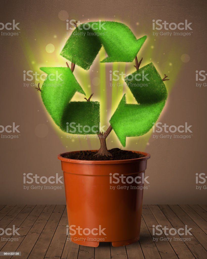 Recycle sign growing out of flowerpot - Royalty-free Botany Stock Photo