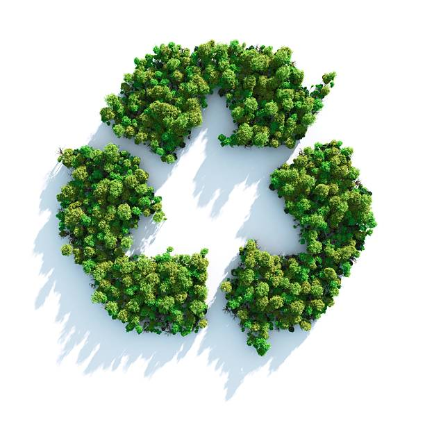 recycle sign made of green trees - recycling symbol stock photos and pictures