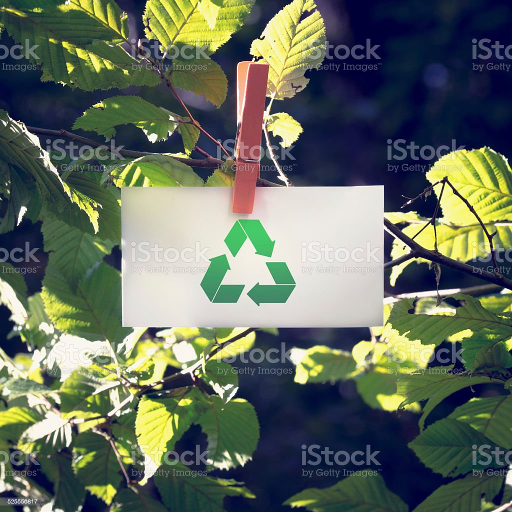 Recycle Sign on Small White Paper at Garden stock photo
