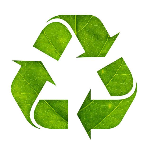 Symbol Symbol des grünen Blattes isoliert auf weißem Hintergrund gemacht Papierkorb – Foto