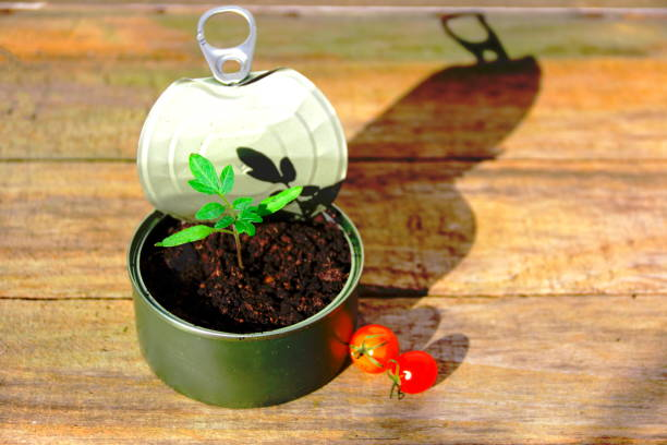 Recycled metal tin with new life. stock photo