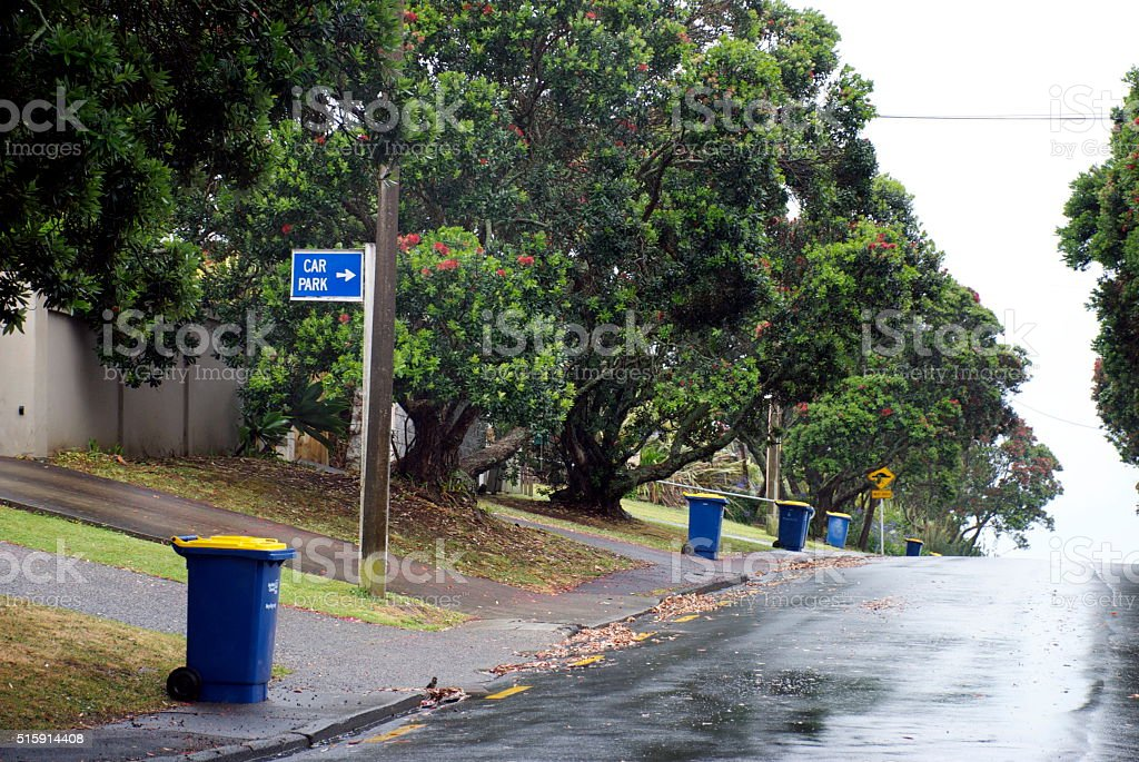 Recycling Day, Auckland, New Zealand