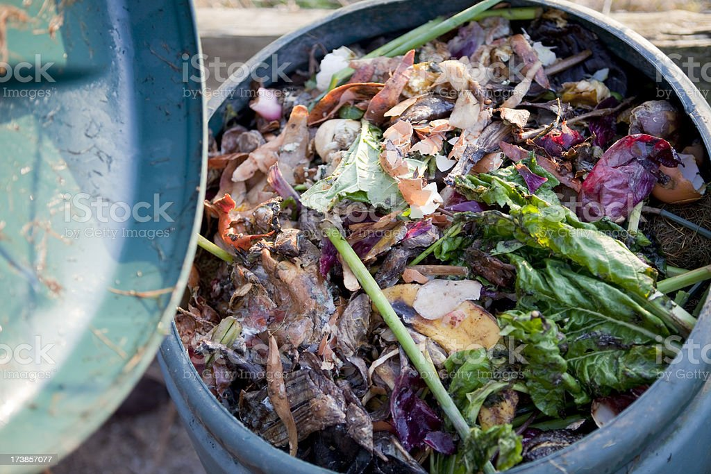 Recycling Food Waste For Compost royalty-free stock photo