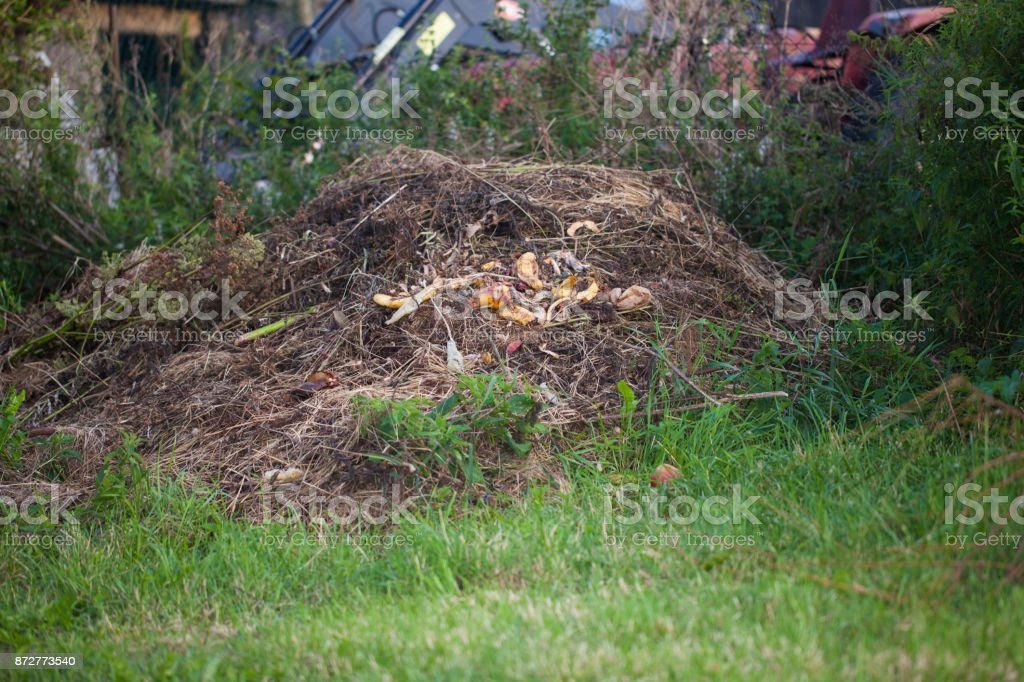 Recycling garden and kitchen waste on a compost heap stock photo