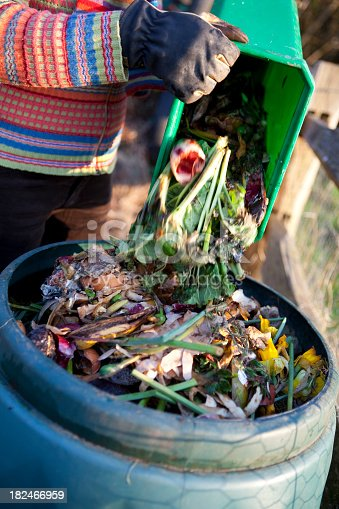 Kitchen waste bin being emptied into a composting bin for recycling into compost for use on a grow your own vegetable garden. Motion blur as the waste food falls out of the bin.