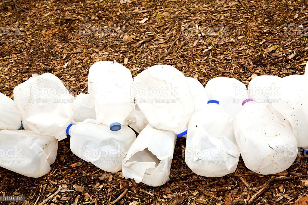 Recycling program in forest preserve stock photo