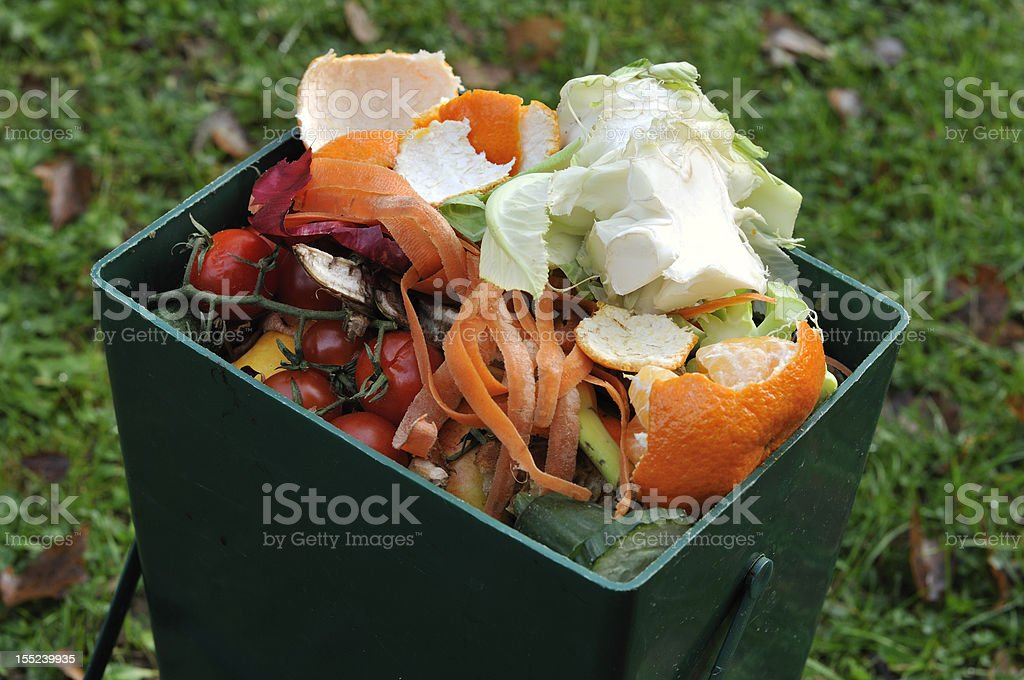 Recycling vegetables royalty-free stock photo