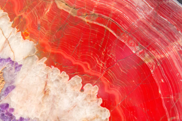 Red Agate mineral stock photo