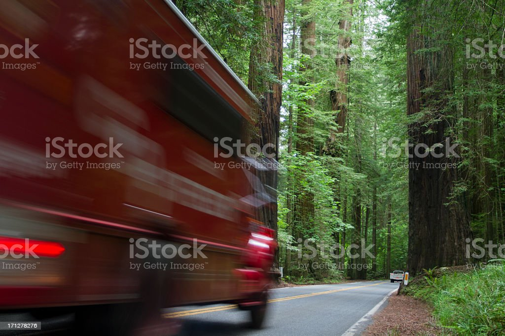 Red Ambulance Racing through Forest stock photo