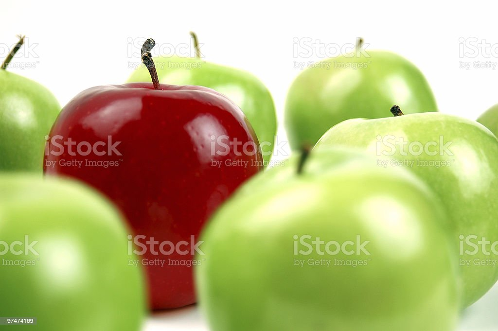 Red among Green royalty-free stock photo