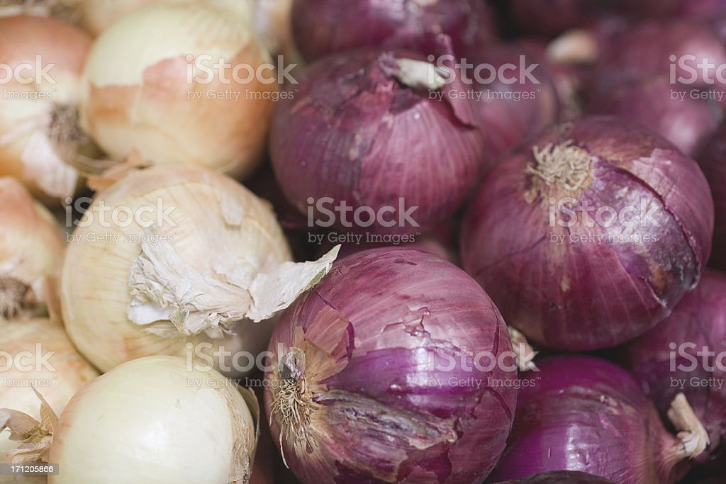 Red and Brown Onions royalty-free stock photo
