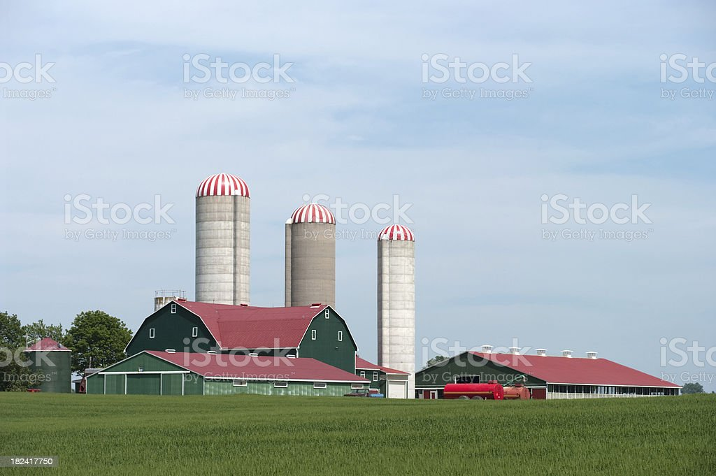 Red and Green Barns, including silos  stock photo