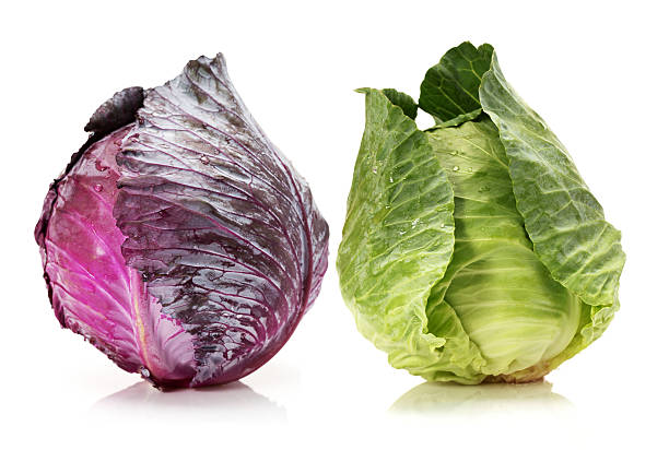 vermelho e verde cabbages - repolho verde - fotografias e filmes do acervo