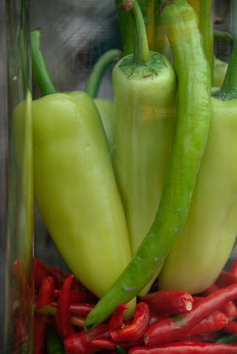 적색 및 녹색 Chili Peppers 0명에 대한 스톡 사진 및 기타 이미지