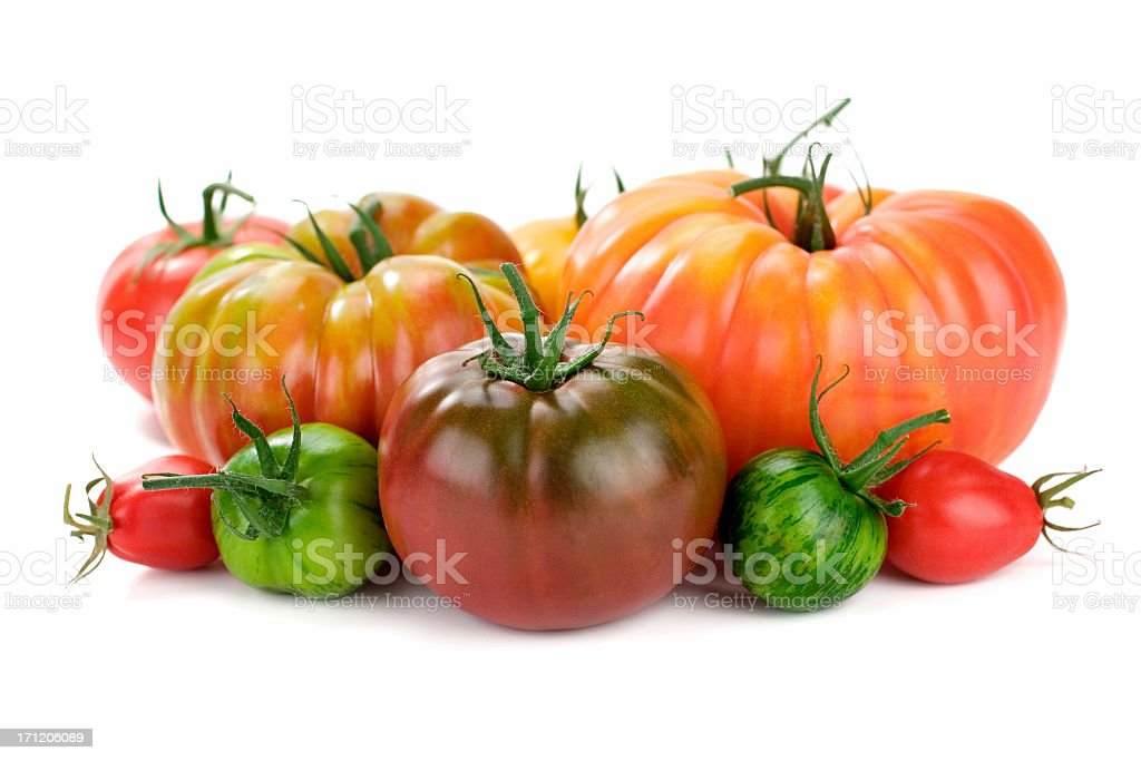 Red and green tomatoes on white background royalty-free stock photo