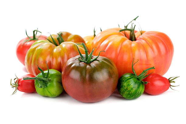 Red and green tomatoes on white background stock photo